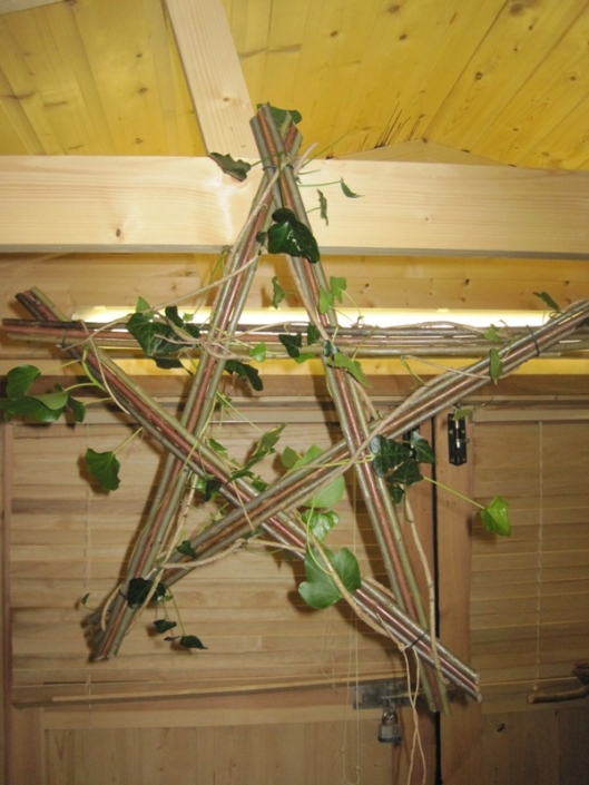 Willow Star