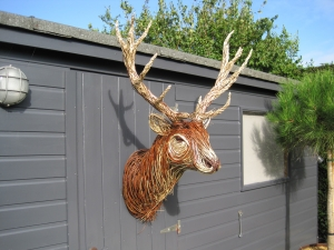 Willow Stag