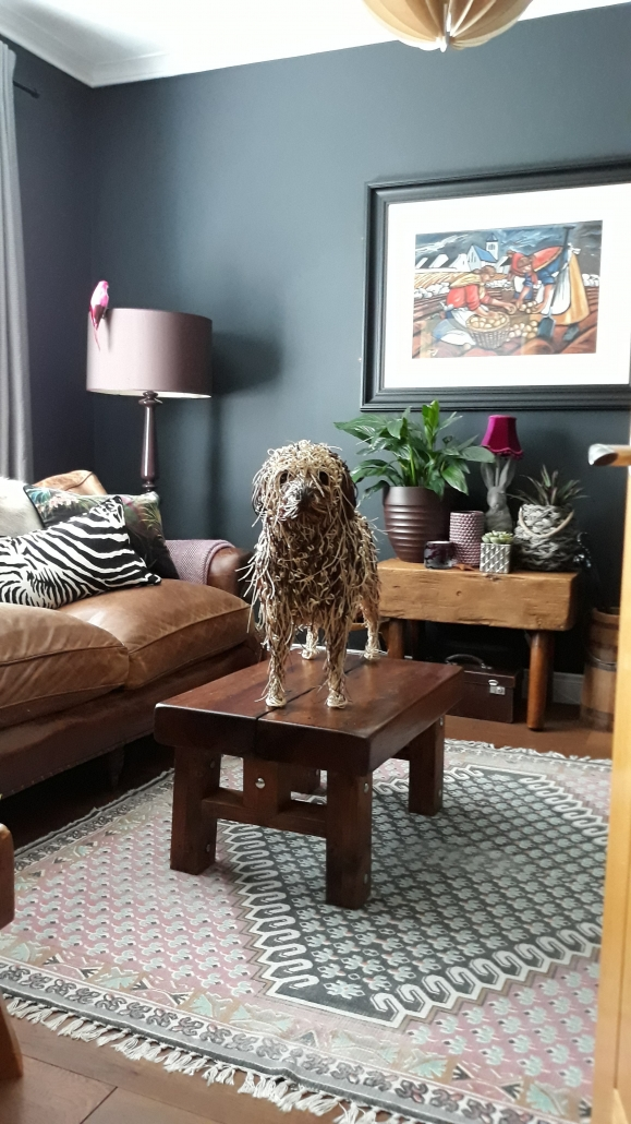 Rollie The Labradoodle