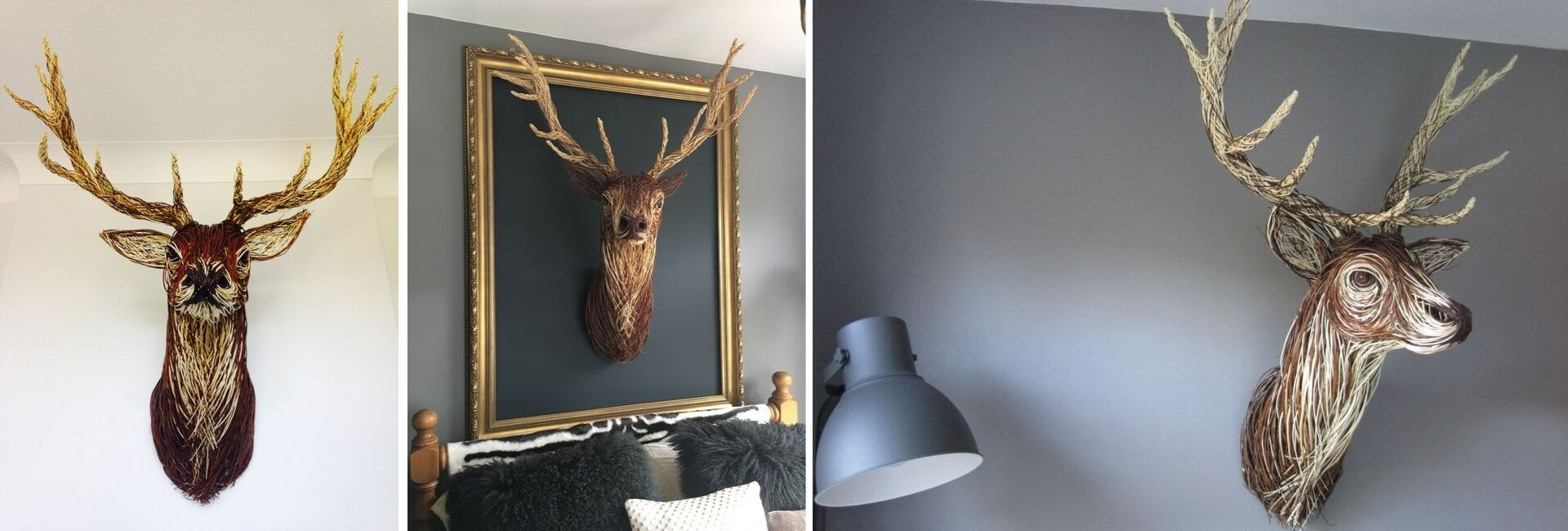 Stag Trophy Heads