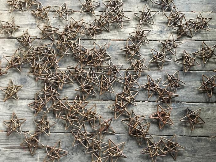 Willow Stars