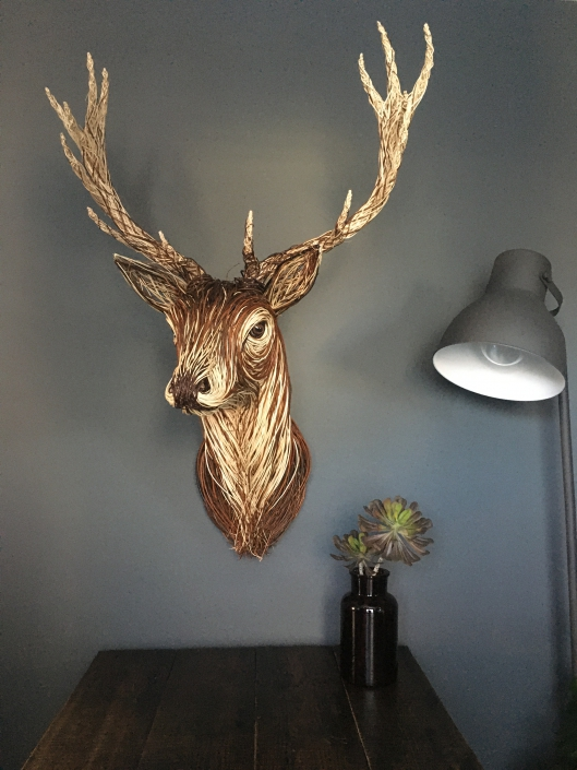 Willow Stag Trophy Head