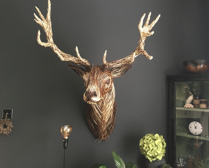 Stag Trophy Head